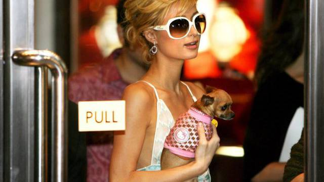 Einst unzertrennlich: Paris Hilton und Tinkerbelle (Archiv)
