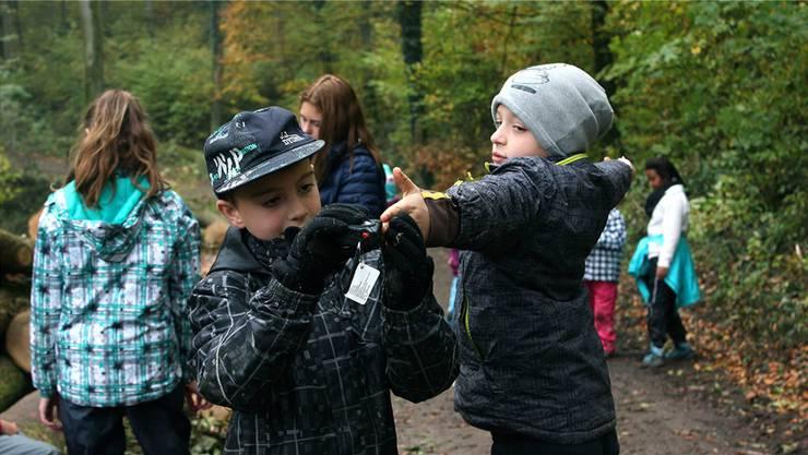 In der Waldschule lernen die Laufenburger Kinder das Schätzen und Messen. zvg