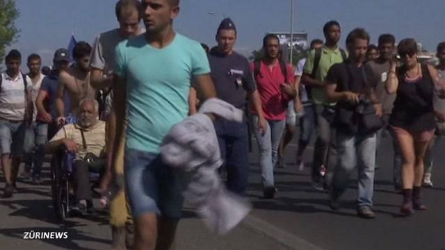 Flüchtlingselend bricht Zürcher Syrern das Herz