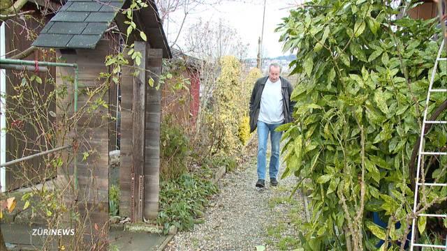Auch ZSC soll an Schrebergärten-Räumung mitzahlen