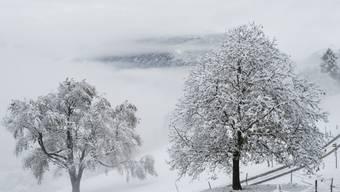 Frisch verschneite Landschaf in Sargans