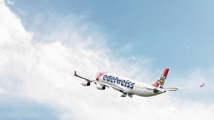 Mittels Chartermaschinen von Edelweiss sollen die Touristen aus Lateinamerika zurückgeholt werden.