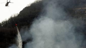 Zwei wilde Feuerstellen lösten einen Waldbrand bei Bennwil aus. (Symbolbild)