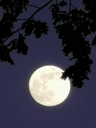 Super-Vollmond-Nacht 6.5.20 aufgenommen in Arch