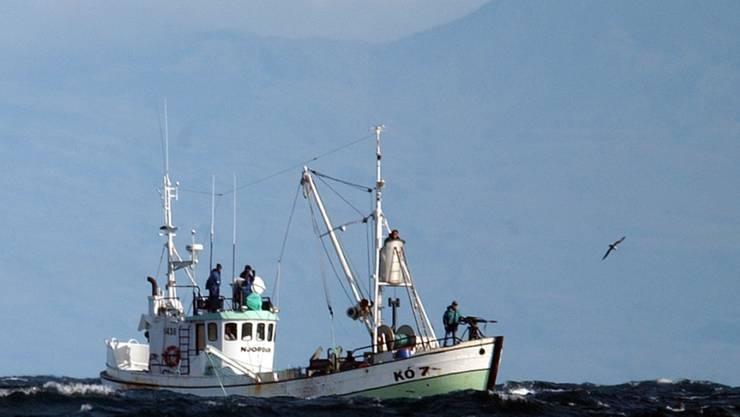 Ein Walfang-Boot vor der Küste Islands. (Archivbild)