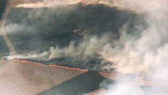 Der Brand im Nationalpark De Hoge Veluwe aus der Vogelperspektive