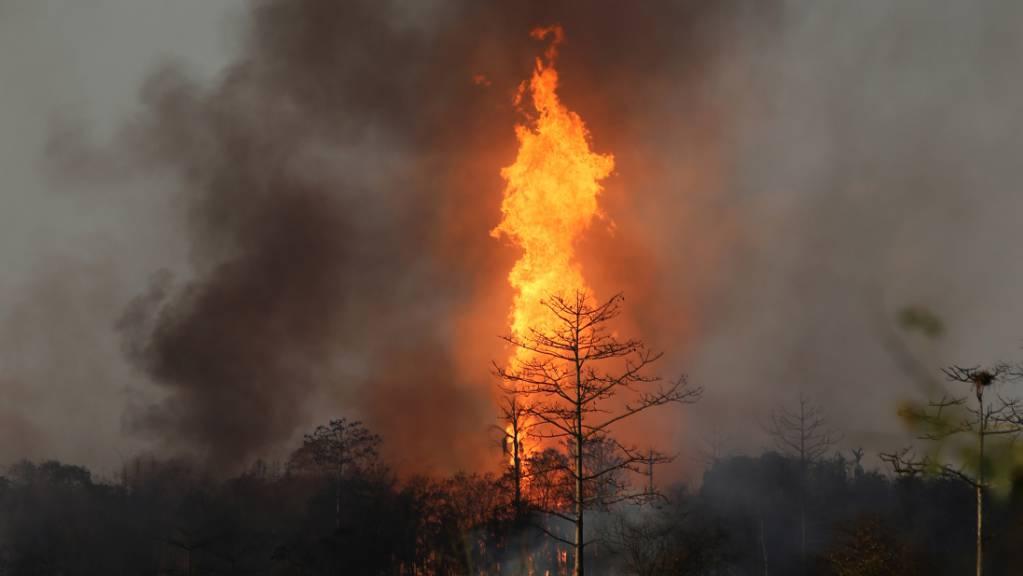 Flammen lodern über einem Ölfeld, nachdem unkontrolliert Gas aus einem Bohrloch geströmt ist und sich entzündet hat.