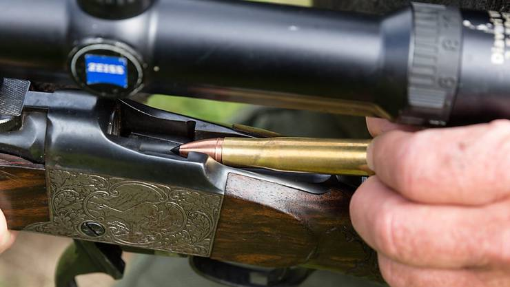 Bündner Jäger und Jägerinnen schossen auf der diesjährigen Hochjagd 30 Prozent mehr Hirsche und Rehe (Themenbild).