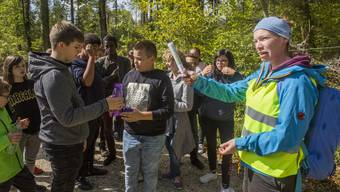 HESO-Sonderschau Kraftort Wald: Schulprogramm im Wald