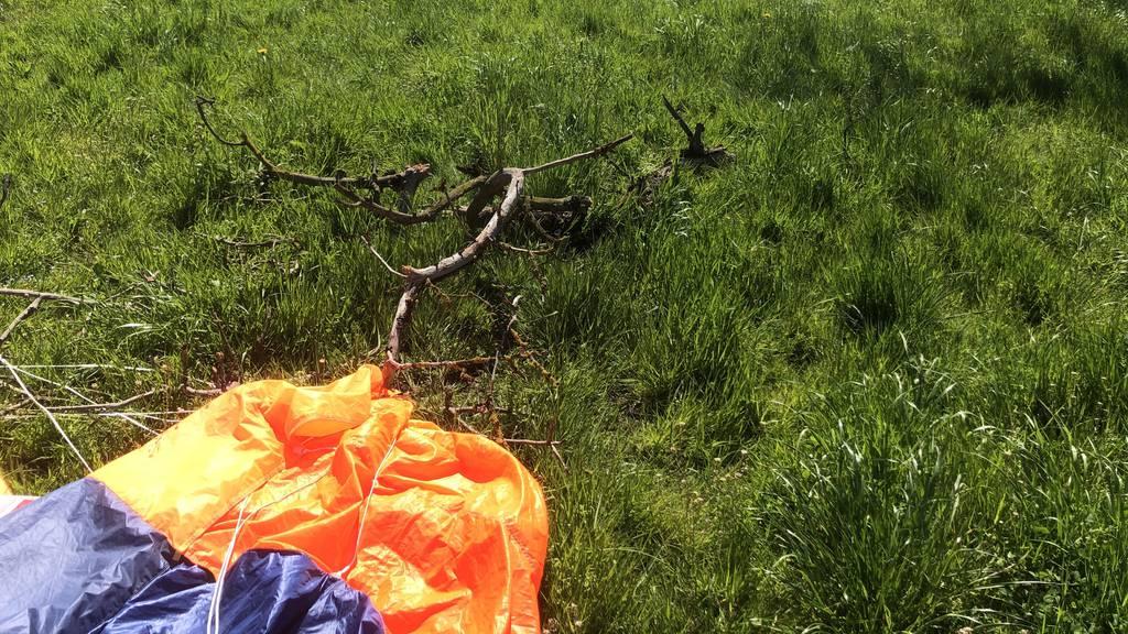 Fallschirmspringer fliegt in Baum und wird verletzt