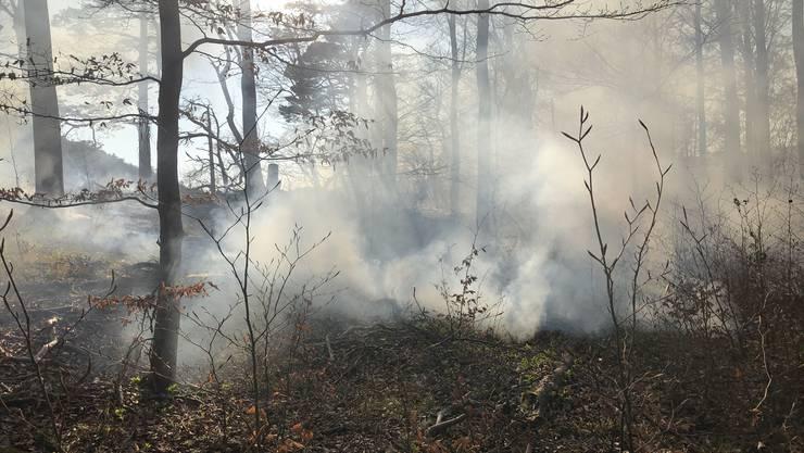 In Balsthal (SO, Bild) und Wettingen kam es am Freitag zu Waldbränden.