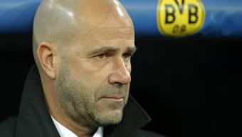 Dortmunds Trainer Peter Bosz sucht vergebens die Tür zum Erfolg