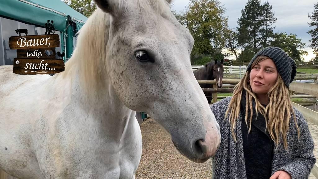 Nastassjas Pferde
