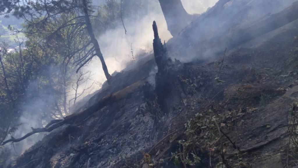 60 Feuerwehrleute bei Flurbrand in Cazis im Einsatz