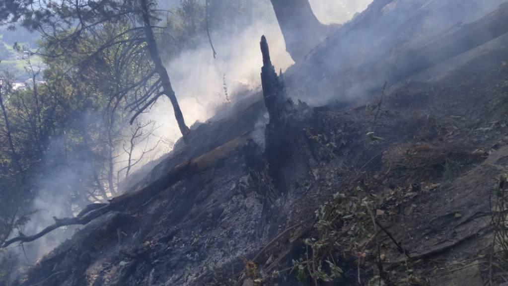 60 Feuerwehrleute sind am Samstag in Cazis GR nach einem Flurbrand in Einsatz gestanden. Aufgrund der Ausweitung des Brandes im unwegsamen Gelände, wurden die Feuerwehren durch zwei Löschhelikoptern unterstützt.