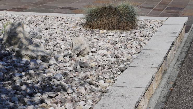 Es sollen möglichst wenig Steingärten angelegt werden.