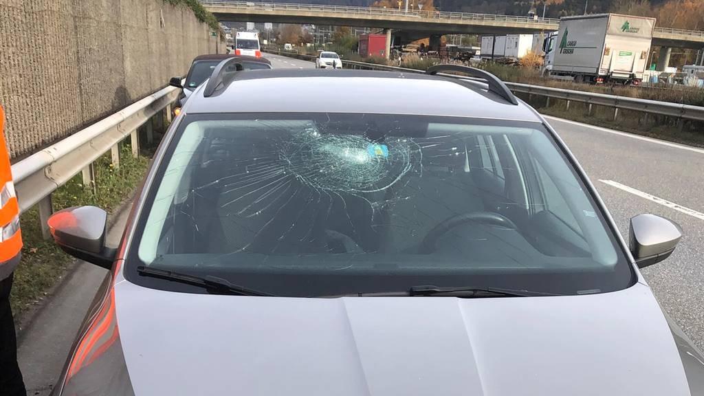 Auto wird von herunterfallendem Ast getroffen