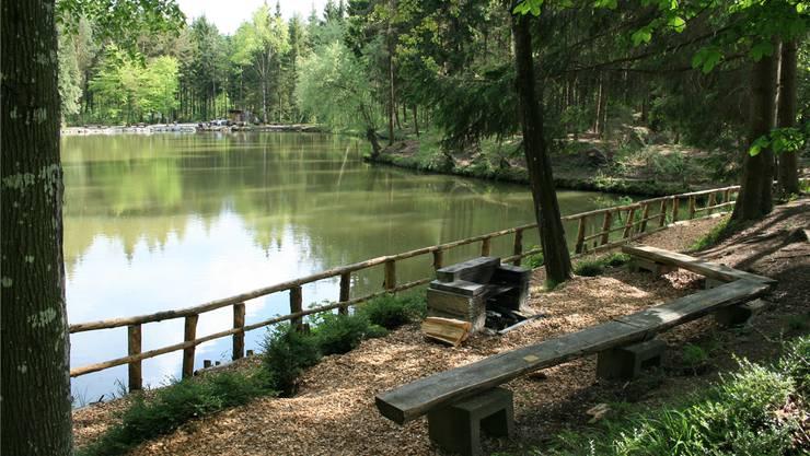 Das Feldenmoos bildet ein wunderschön ausgebautes kleines Paradies mitten im Boswiler Wald. Damit es erhalten bleiben kann, wird nun Schlamm ausgebaggert.