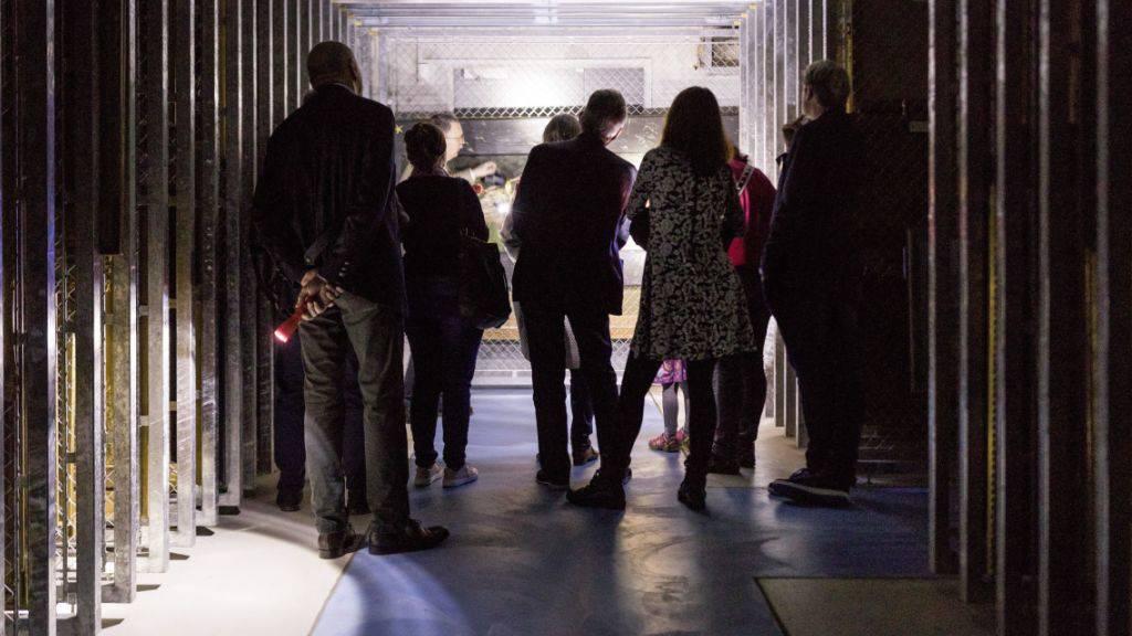 Zum Sommerprogramm des St. Galler Kunstmuseums gehören auch Führungen durch das Gemäldedepot unter den Stadtpark.
