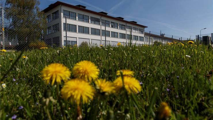 Schon in ein paar Wochen wird von der Industriehalle in Langendorf nichts mehr übrig sein. Stattdessen sollen Wohnungen gebaut werden. Hanspeter Bärtschi