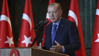 Der türkische Präsident Erdogan reagiert mit drastischen Massnahmen auf die Krise der türkischen Währung Lira. Unter anderem sollen negative Kommentare über die wirtschaftliche Lage bestraft werden.