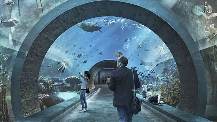 Ozeanium des Zolli Basel: Über das Projekt wird das Basler Stimmvolk am 19. Mai abstimmen.