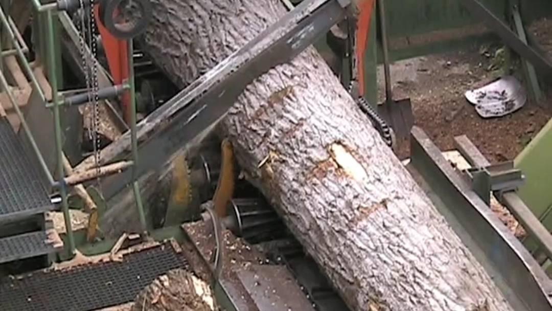 So wird aus einem Baumstamm ein Ski: Produktionsvideo von Hess & Co AG (Produktionsvideo aus dem Jahre 2012)
