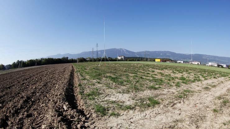 Die Bauprofile deuten es an: Kühne + Nagel will auf dem Derendinger Wissensteinfeld bauen
