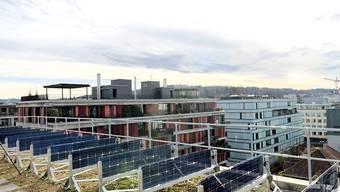 Senkrecht montierte Solaranlagen können zu jenen Zeiten am meisten Strom liefern, wenn herkömmliche Anlagen eine Flaute haben. In Winterthur werden solche Solarpanels getestet.