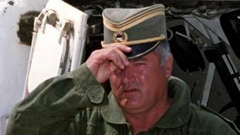 Mladic, Karadzic und der Bosnienkrieg