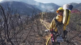 Feuerwehrleute im Einsatz im Bezirk Santa Barbara
