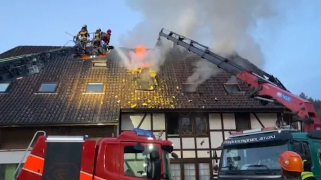 Hausbrand in Oberkulm (AG): Sieben Haustiere sterben in Flammen