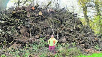 Forstwart Christoph Schmid setzt sich für die Artenerhaltung im Wald ein.