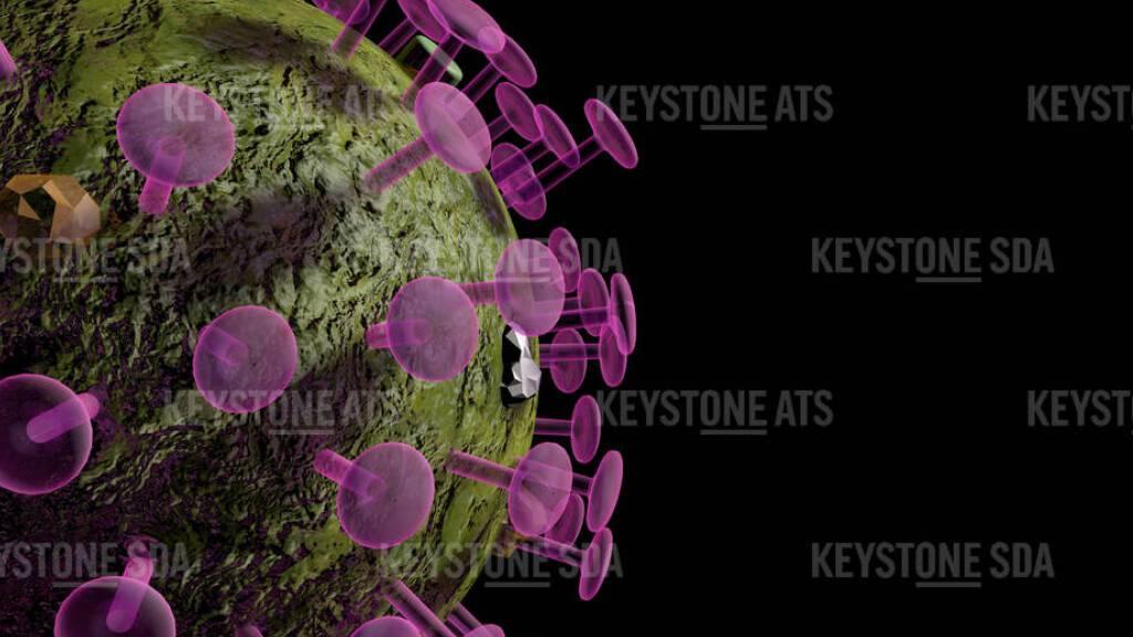 BAG meldet 4382 neue Coronavirus-Fälle innerhalb von 24 Stunden