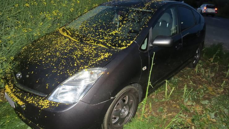 Ein VW Polo soll den 18-jährigen Neulenker in seinem Toyota ausgebremst haben, dieser wich seitlich aus, um einen Zusammenstoss zu verhindern