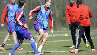 Abschlusstraining des FC Basel vor dem Spiel gegen Tottenham