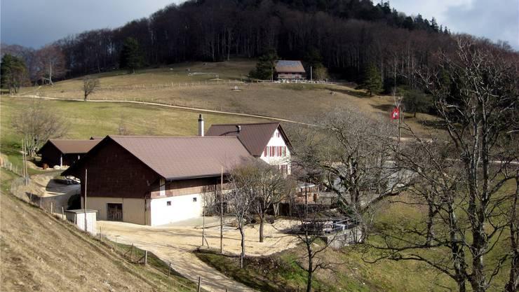 Blick von Westen auf die Oensinger Bergwirtschaft Roggen und das Bürgerhaus – beides zu Füssen der Roggenfluh Fotos: Bruno Heiniger