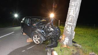 Gegen 21 Uhr prallte der Lenker auf der Grüningerstrasse gegen einen Baum.
