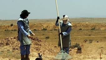 Spezialistinnen in Jordanien auf der Suche nach Landminen (Archiv)