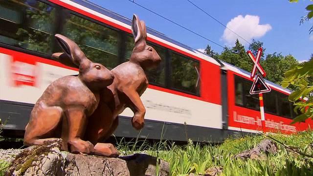 Mit der Zentralbahn auf der Brünig Safari