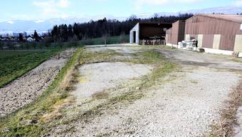 Auf diesem Platz bei Landwirt Urs Zuber wollen die Wagabunten ihre Wagenburg errichten.