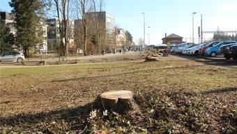 Es ist weg: An das Pärkchen, wo sich täglich Randständige und Leute, die von der Arbeit kamen, trafen, erinnern nur noch die Baumstrünke. Bald werden auch sie dem neuen Bushof weichen. Andrea Weibel