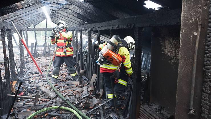 Feuerwehrleute bekämpfen die Flammen nach dem Blitzeinschlag im Dachstock eines Mehrfamilienhauses in Luzern.
