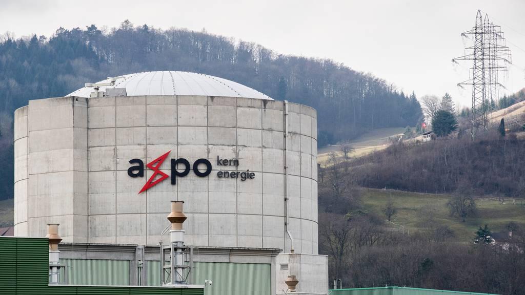 Kraftwerkbetreiber wollen Langzeitbetrieb für alle Atomkraftwerke sichern