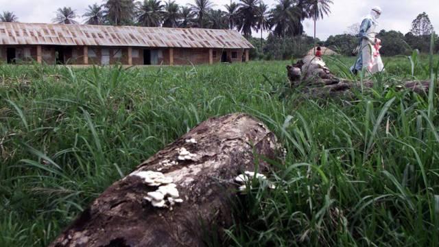 Nach einem Ebola-Ausbruch 2001 in Gabon (Archiv)