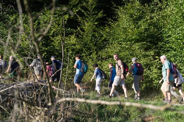 95 Wanderer genossen die Abendsonne beim Marsch durchs Uerkental.