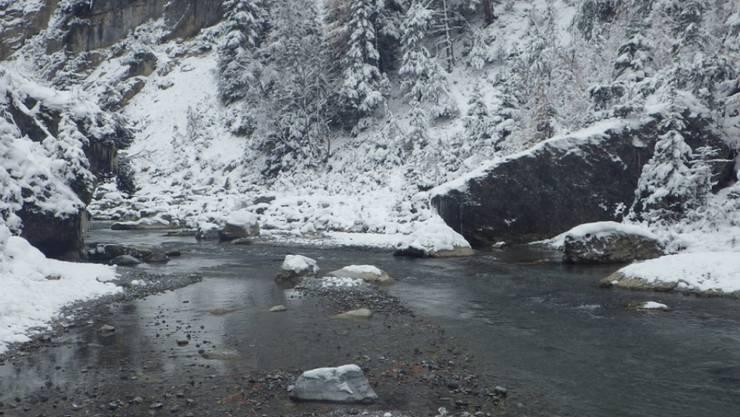 Scheinbare Idylle: Der Bach Spöl im schweizerischen Nationalpark wurde mit krebsauslösendem PCB verseucht. Gefahr droht den Fischen.