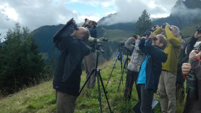 Die Vogel- und Naturfreunde verfolgen den Zug der Greifvögel