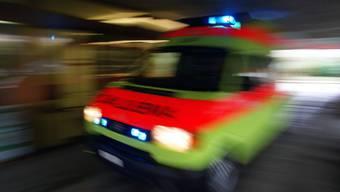 Grosseinsatz von Feuerwehr und Rettungskräften am Dienstagabend auf dem Gelände eines Paket-Verteilzentrums im deutschen Bundesland Sachsen-Anhalt. (Symbolbild)