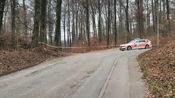 Polizei im Bannwald
